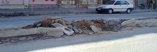 قطع درختان خیابان عدالت بهبهان