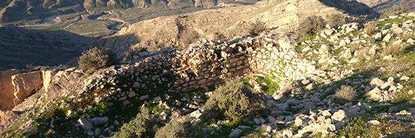 قلعه ارجان (ارگان)